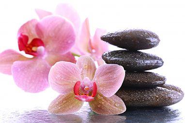 stones_orchid_closeup_465121